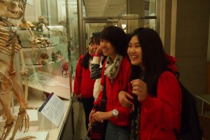 Students enjoying an exhibition